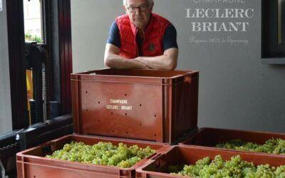 2014 Leclerc Briant Millésime Extra Brut finns nu för beställning